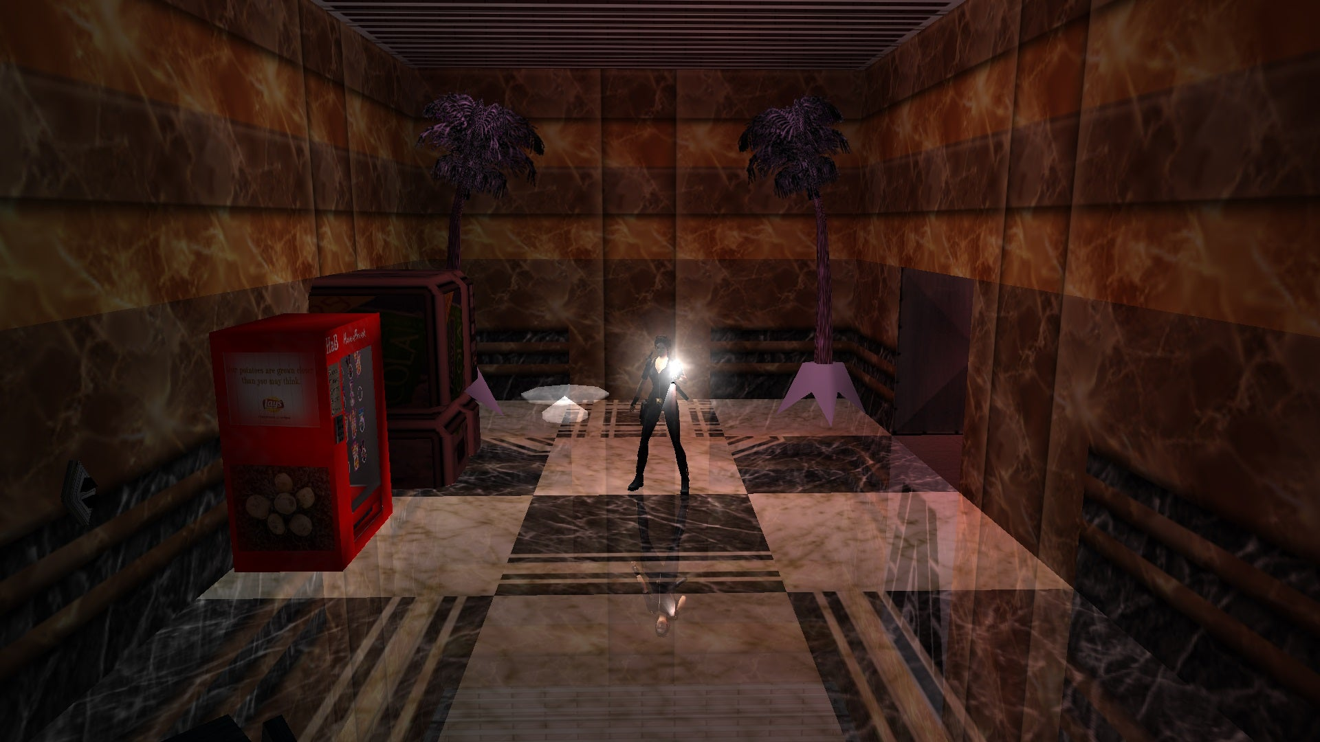 A screenshot from the Tomb Raider custom level called The 13th Floor
